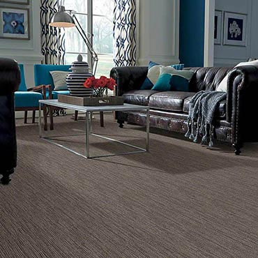 Anso® Nylon Carpet | Elkhart, IN